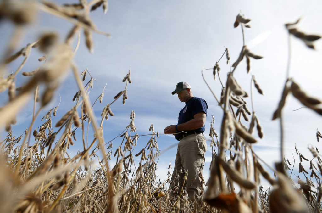 Agriculture Dept  to send $12 billion to farmers hurt by