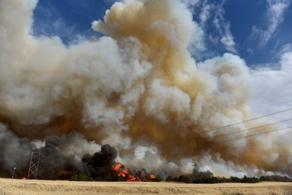 The Rhea fire burns through a grove of red cedar trees near Seiling, Oklahoma, U.S. April 17, 2018. REUTERS/Nick Oxford.
