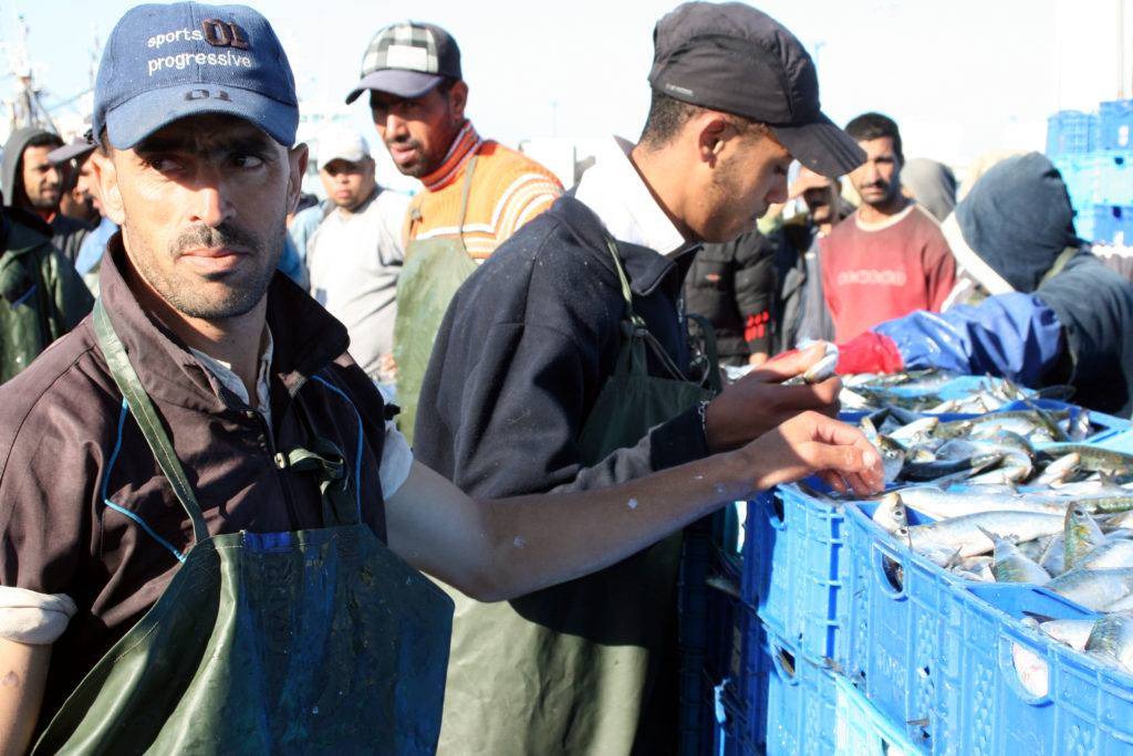 Fishermen in Western Sahara. Photo by Larisa Epatko