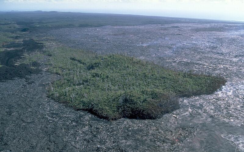 This kipuka formed during the Pu`u `O`o-Kupaianaha eruption on the east rift zone of Kilauea Volcano, Hawaii. Photo by J.D. Griggs/via wikimedia