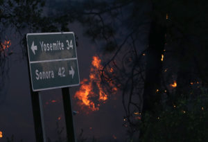 Flames from the 2013 Rim Fire burn near a road sign pointing towards Yosemite in Groveland, California. Photo by Justin Sullivan/Getty Images