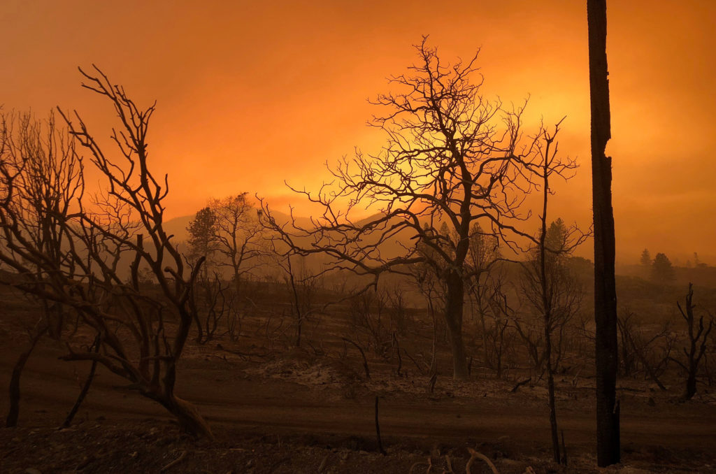 A blackened landscape is shown from wildfire damage near Keswick, California, July 27, 2018. Photo by Alexandria Sage/Reuters