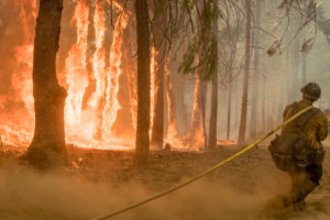 A firefighter amid a wildfire near Yosemite National Park in California. Photo by U.S. Forest Service/Yosemite National Park via Reuters