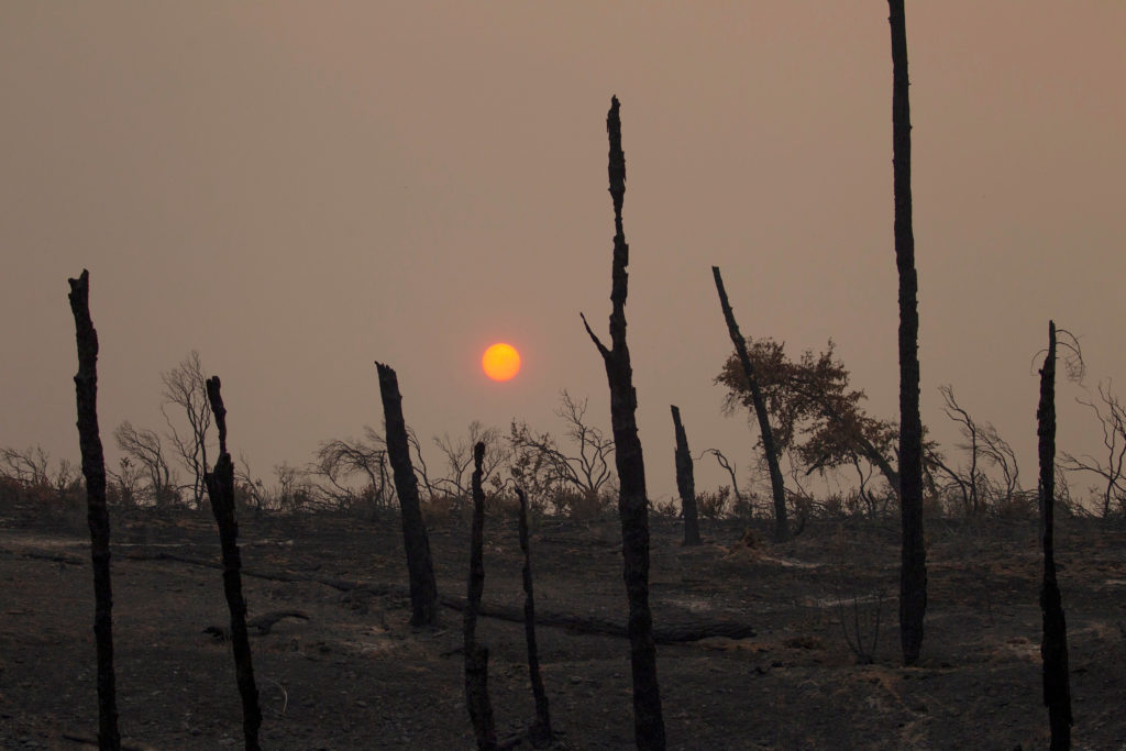 The sun sets over hills burned by the Carr Fire west of Redding, California. Photo by Bob Strong/Reuters