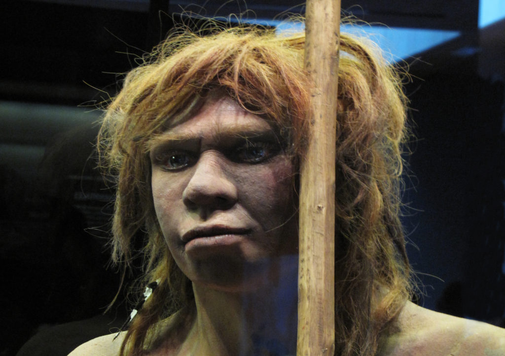 Ancient child from Siberia was Neanderthal and Denisovan hybrid