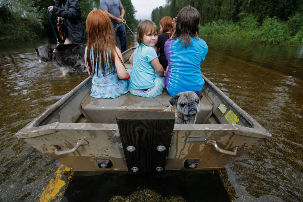 Iva Williamson, 4 years old, peers behind her as she joins neighbors and pets in fleeing rising flood waters in the aftermath of Hurricane Florence in Leland, North Carolina, U.S., September 16, 2018. REUTERS/Jonathan Drake