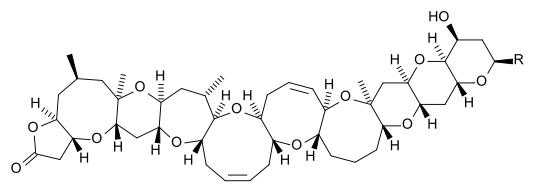 Brevetoxin-A. Image by Minutemen/via Wikimedia