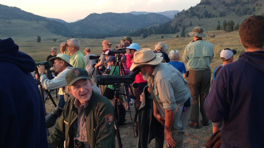 Rick McIntyre talks to wolf watchers on Bob's Knob