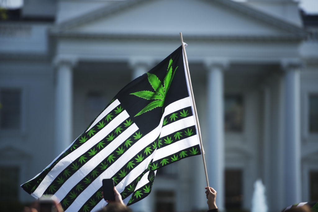 Hundreds of advocates for marijuana legalization rally and smoke pot outside the White House in Washington, D.C. in 2016. Photo by Marvin Joseph/The Washington Post via Getty Images