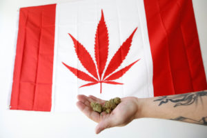An employee holds marijuana in front of a modified Canadian flag with a marijuana leaf while posing in a photo illustration at a dispensary in Ottawa, Ontario, Canada. Canada on Wednesday became the second country in the world to legalize marijuana. Photo by Chris Wattie/Reuters