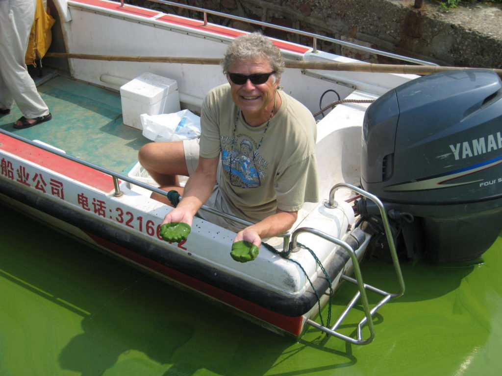 Hans Paerl has traveled all the way to China's Lake Taihu to study aggressive cyanobacteria (blue-green algae) blooms. These blooms can produce toxins that cause cancer or liver problems, and nuerotoxins that can cause symptoms of Alzheimer's. In other words, don't try this at home. Photo by Hans Paerl