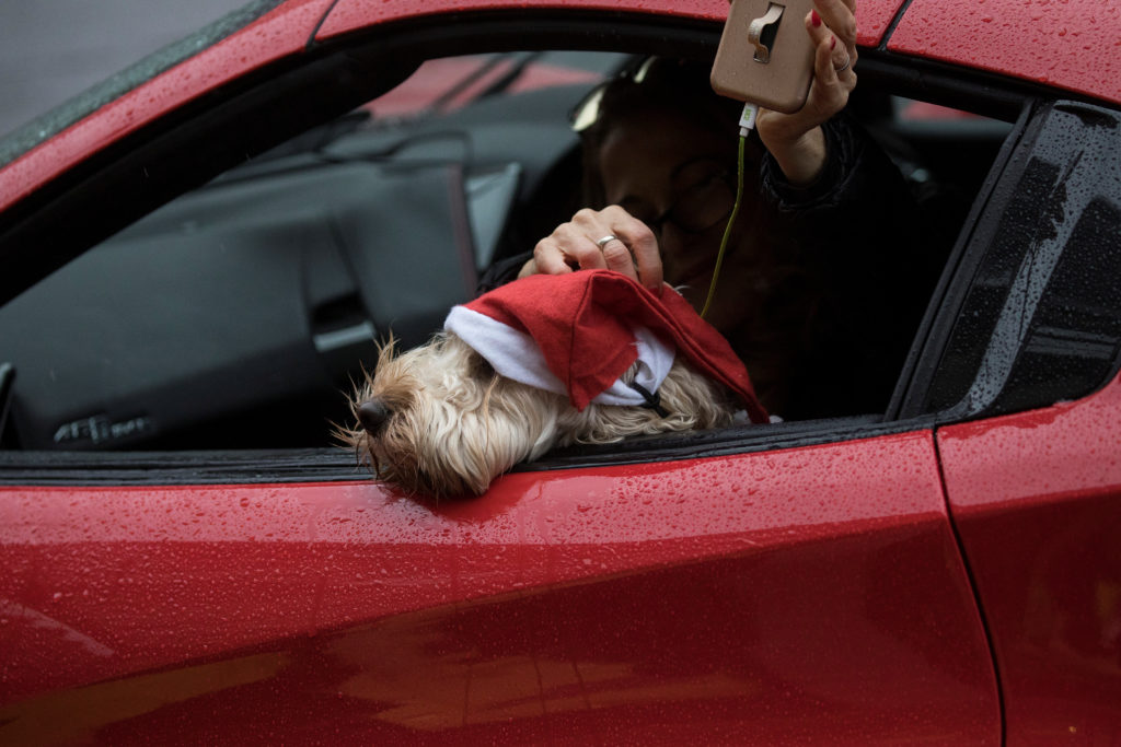 A dog wearing a Santa Claus hat leans out of Ferrari as it drives along Oxford Street in London, Britain December 15, 2018. Photo by REUTERS/Simon Dawson