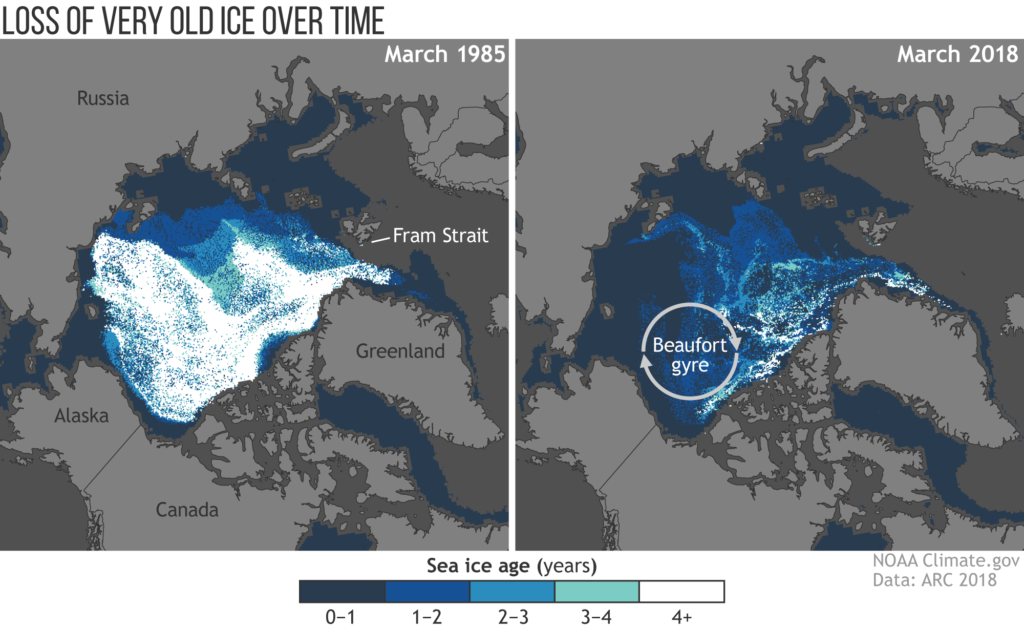 The 2018 Arctic Report Card found the Arctic region had the second-lowest overall sea-ice coverage on record. The map show...