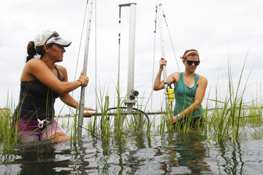 Carter Smith (left) and Avery Becca Gaesse use a Didson to study living shorelines in Beaufort, North Carolina. Photo by ML Parker/UNC Research