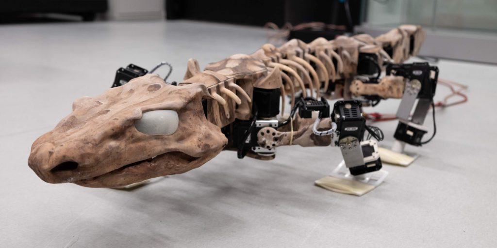 OroBOT, a robotic model made of 3D-printed parts and 28 individual motors, can demonstrate how Orobates might have walked ...