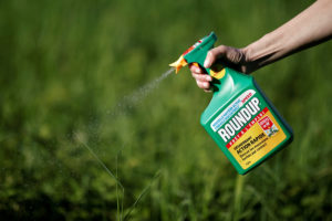 A woman uses a Monsanto's Roundup weedkiller spray without glyphosate in a garden in Ercuis near Paris, France, May 6, 2018. Photo by REUTERS/Benoit Tessier