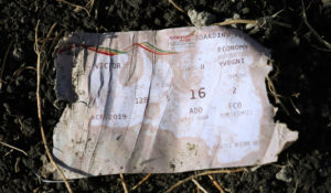 A boarding pass is seen at the scene of the Ethiopian Airlines Flight ET 302 plane crash, near the town of Bishoftu, southeast of Addis Ababa, Ethiopia. Photo by Tiksa Negeri/Reuters