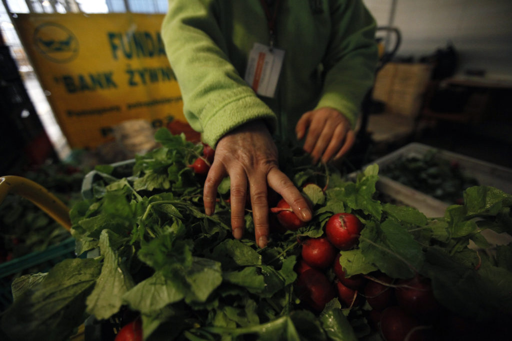 5 ways social entrepreneurs are trying to cut food waste