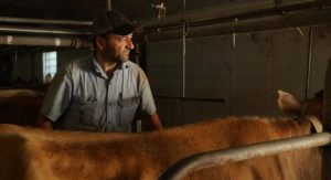 Wisconsin dairy farmers are struggling to stay afloat. In 2018, more than 2,700 dairy farms in the U.S. went out of business, with nearly a third of those closures taking place in Wisconsin.