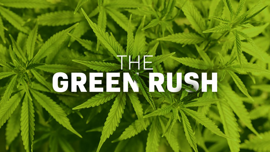 Image result for the green rush