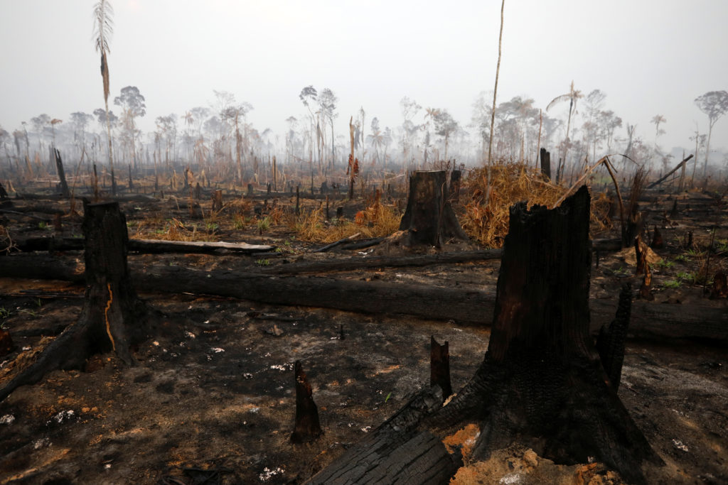 9 numbers you need to know to understand the Amazon fires