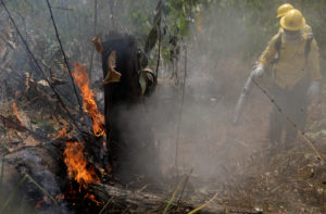 Firefighters extinguish a fire in Amazon jungle in Porto Velho, Brazil August 25, 2019. Photo by Ricardo Moraes/Reuters