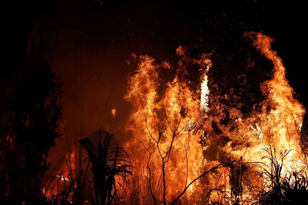 A fire burns a tract of Amazon jungle as it is cleared by loggers a…