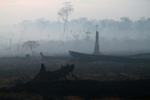 A burned tract of Amazon jungle is pictured as it is cleared by loggers and farmers near Porto Velho, Brazil August 28, 2019. Photo by Ricardo Moraes/Reuters