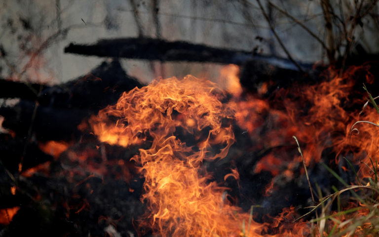No, the Amazon fires won't deplete the Earth's oxygen supply