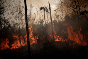 A burning tract of Amazon jungle is seen while as it is being cleared by loggers and farmers in Porto Velho, Brazil August 23, 2019. Photo by Ueslei Marcelino/Reuters