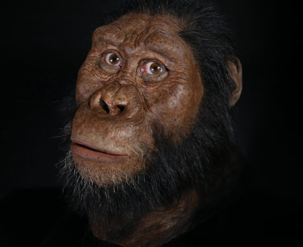 Facial reconstruction by John Gurche made possible through generous contribution by Susan and George Klein. Courtesy of the Cleveland Museum of Natural History