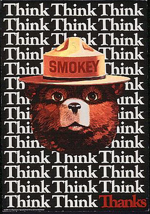 Smokey Bear is pictured in a 1982 US Forest Service poster. Illustration by  REUTERS/U.S. Forest Service/Handout via Reuters