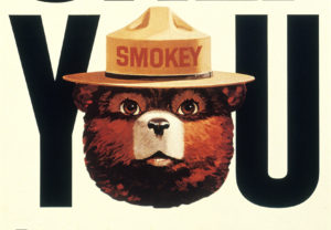 Smoky Bear, who has been the figurehead of the U.S. Forest Service's anti-fire campaign, turns 75 years old August 9, 2019. Photo by REUTERS/U.S. Forest Service/Handout via Reuters