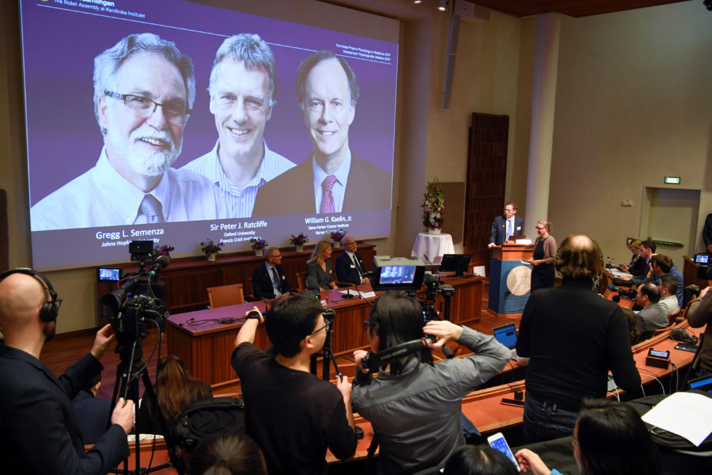 Thomas Perlmann, Secretary-General of the Nobel Committee, presents the Nobel laureates, William G. Kaelin Jr, Sir Peter J. Ratcliffe and Gregg L. Semenza, of this year's Nobel Prize in Medicine during a news conference in Stockholm, Sweden, October 7, 2019. Pontus Lundahl/TT News Agency/via Reuters