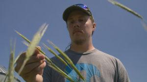 Iowa Sustainable Farming, Future of Food