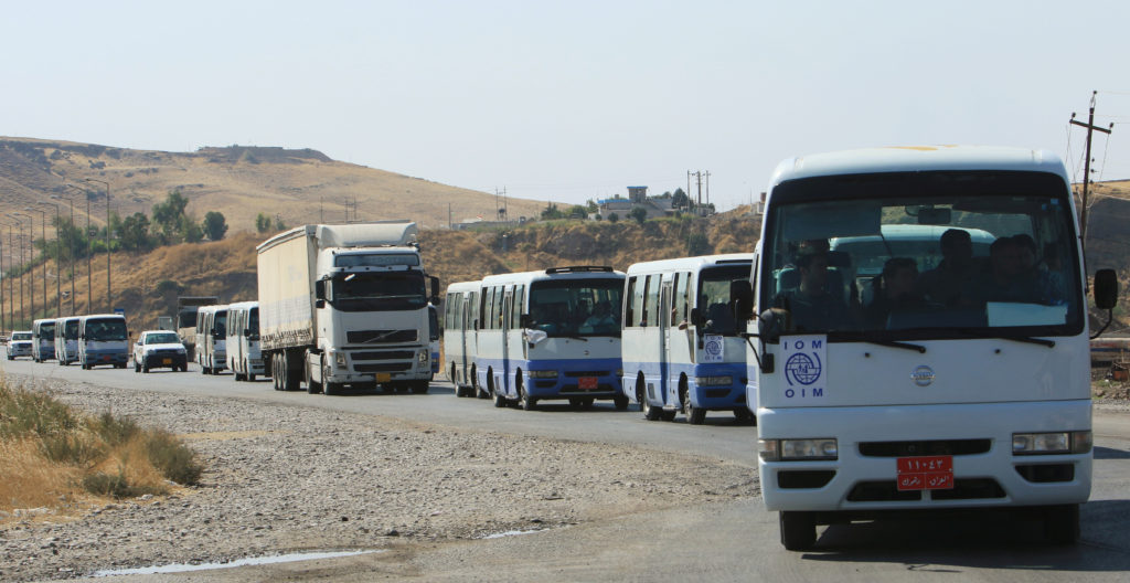 Buses carry Syrian displaced families, who fled violence after the …