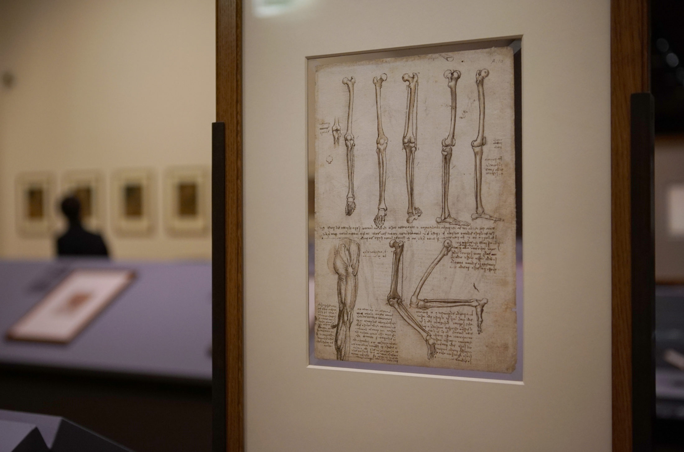 A da Vinci drawing that examines the movement of the arm. Photo by Joshua Barajas/PBS NewsHour
