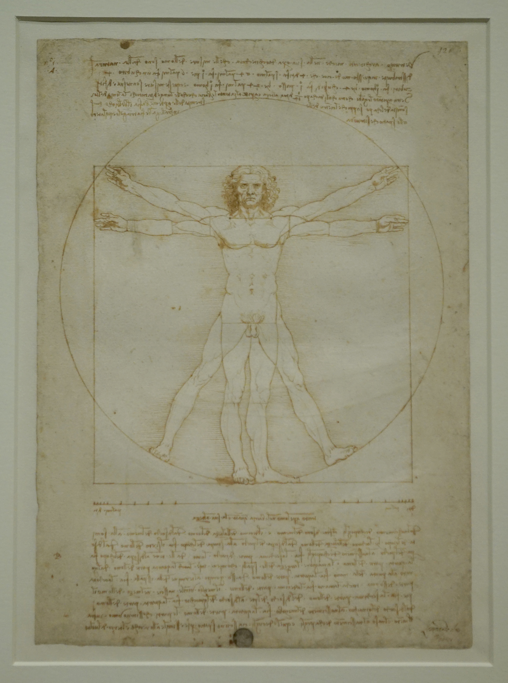 "Da Vinci's ""Vitruvian Man"" drawing was installed days before the Louvre exhibit opens. Photo by Joshua Barajas/PBS NewsHour"