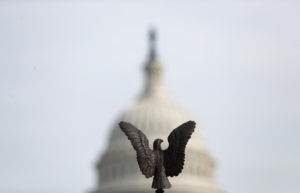 A view shows the dome of the U.S. Capitol building behind a bronze eagle in Washington, U.S., November 15, 2019. Photo by REUTERS/Yara Nardi