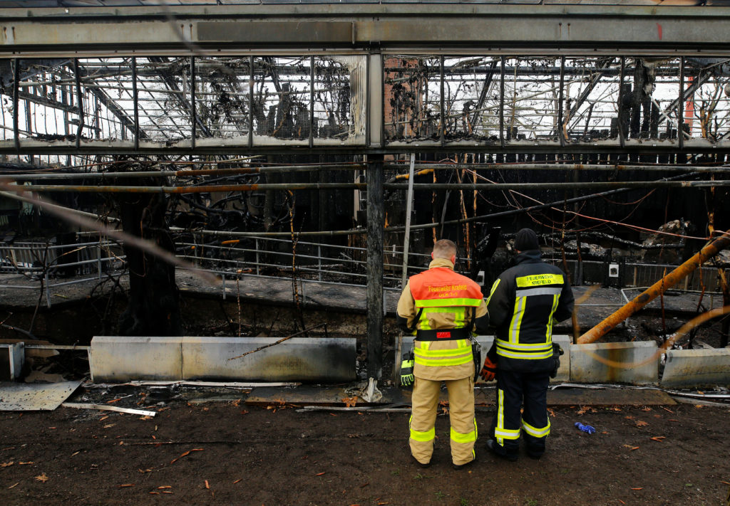 Firefighters observe a burned monkey house in the zoo of Krefeld, Germany, January 1, 2020. Photo by Thilo Schmuelgen/Reuters
