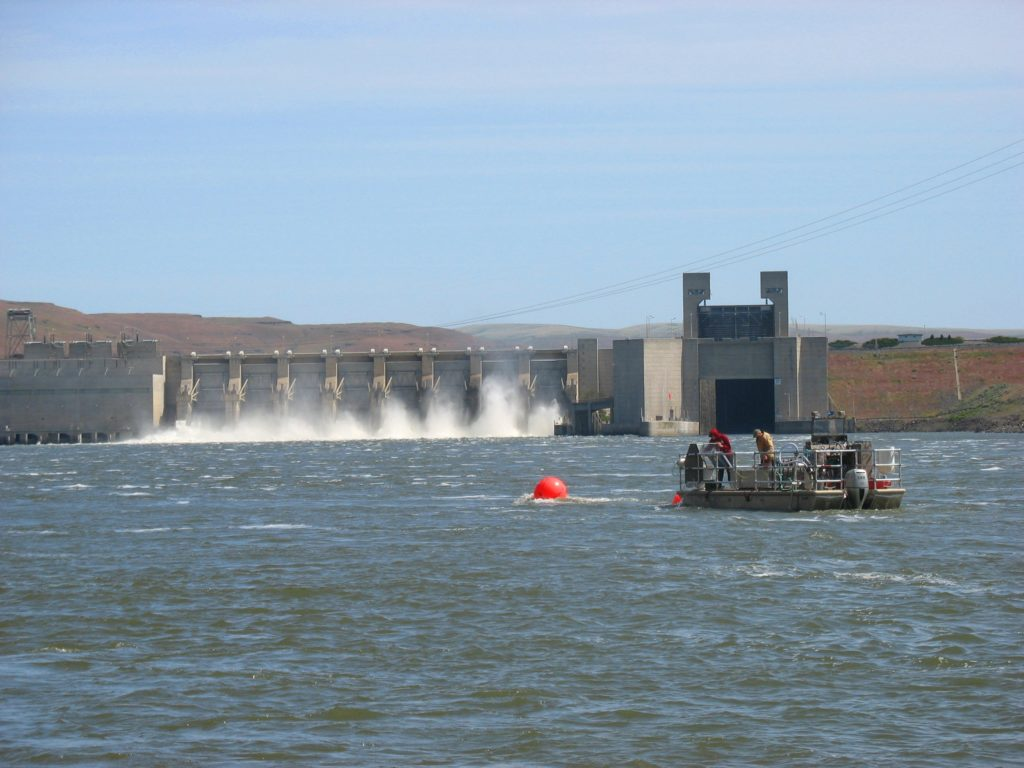 Feds won't allow Oregon dams to be removed to aid salmon recovery