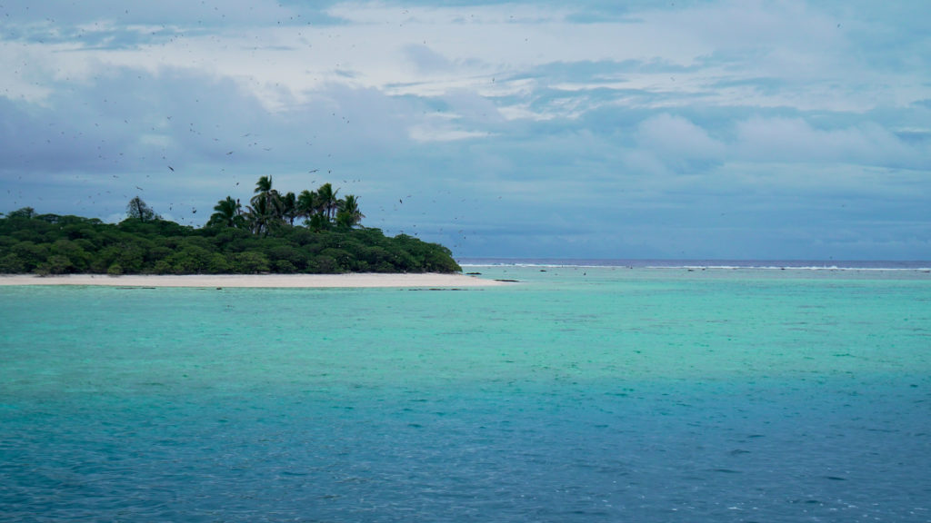 """Island of Seabirds"" to the Samoan people, Rose Atoll Marine National Monument is a major nesting site to a dozen bird species, as well as green sea turtles and other wildlife."