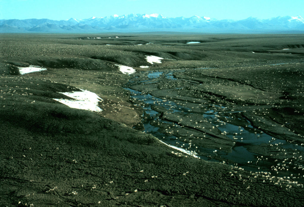 U S Bureau Of Land Management Pbs Newshour