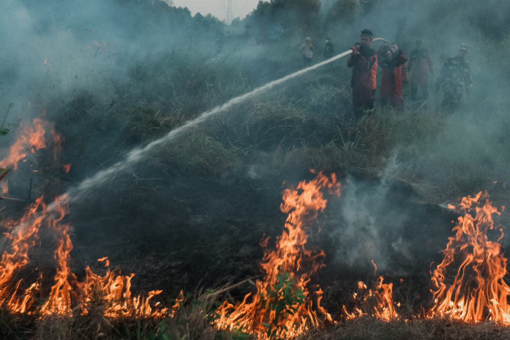 Firefighters Try To Extinguish Peatland Forest In South Sumatra, Indonesia