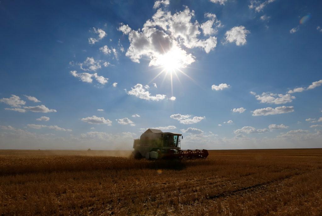 FILE PHOTO: A John Deere combine harvests wheat in a field of the Oktyabrskoe farming company in Akmola region, Kazakhstan