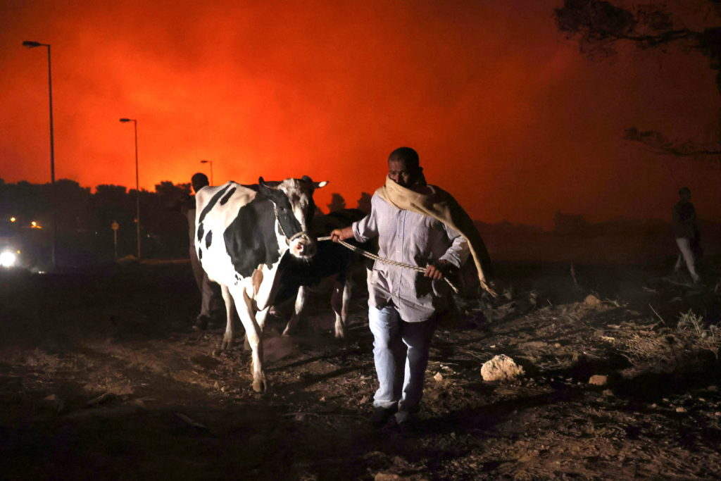 Wildfires rage in north of Athens