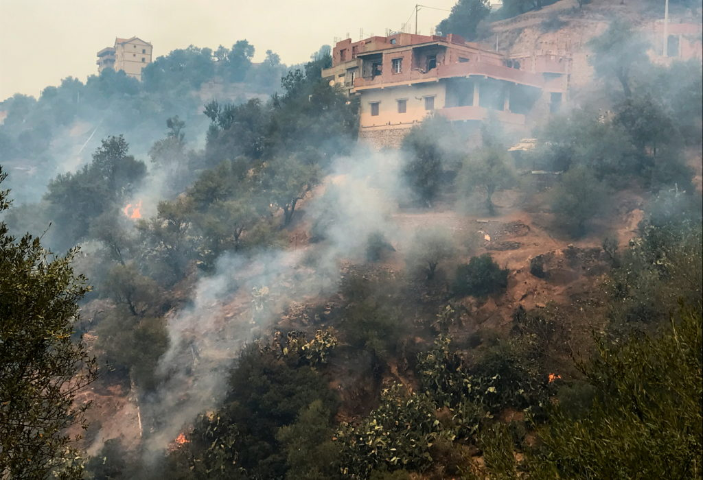 Smoke rises from a forest fire in Tizi Ouzou province