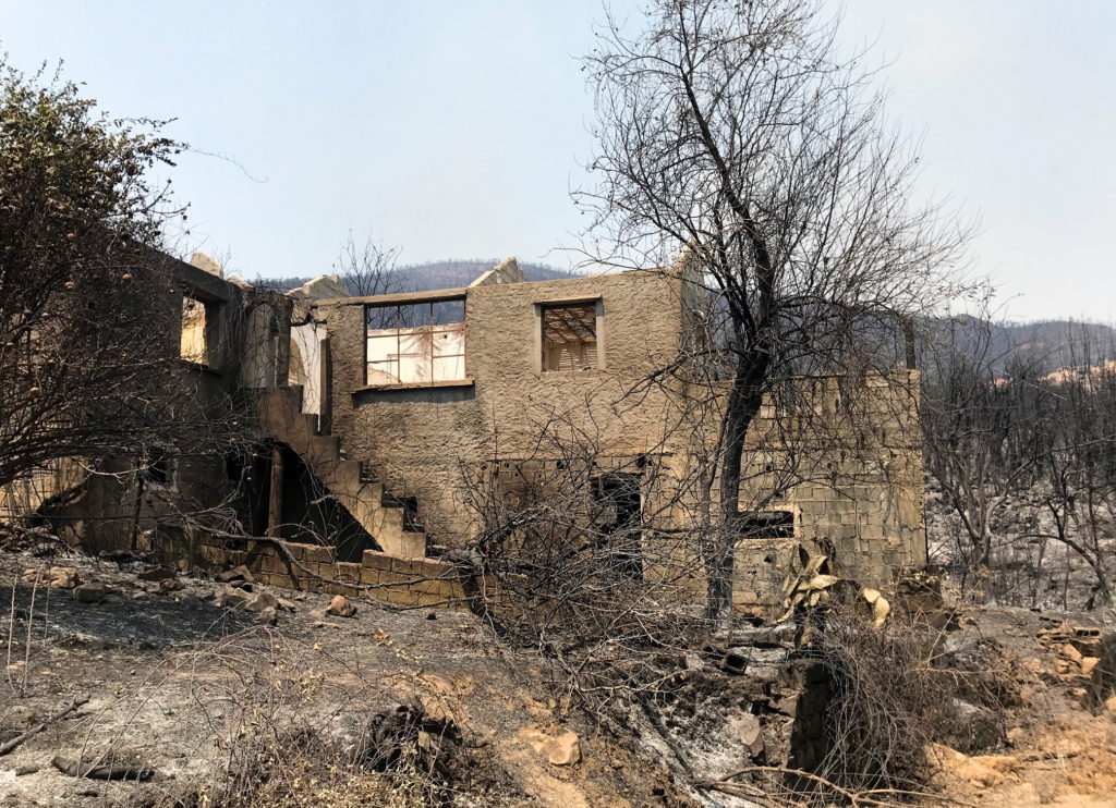 A view shows a burnt area in the aftermath of a wildfire in Zekri