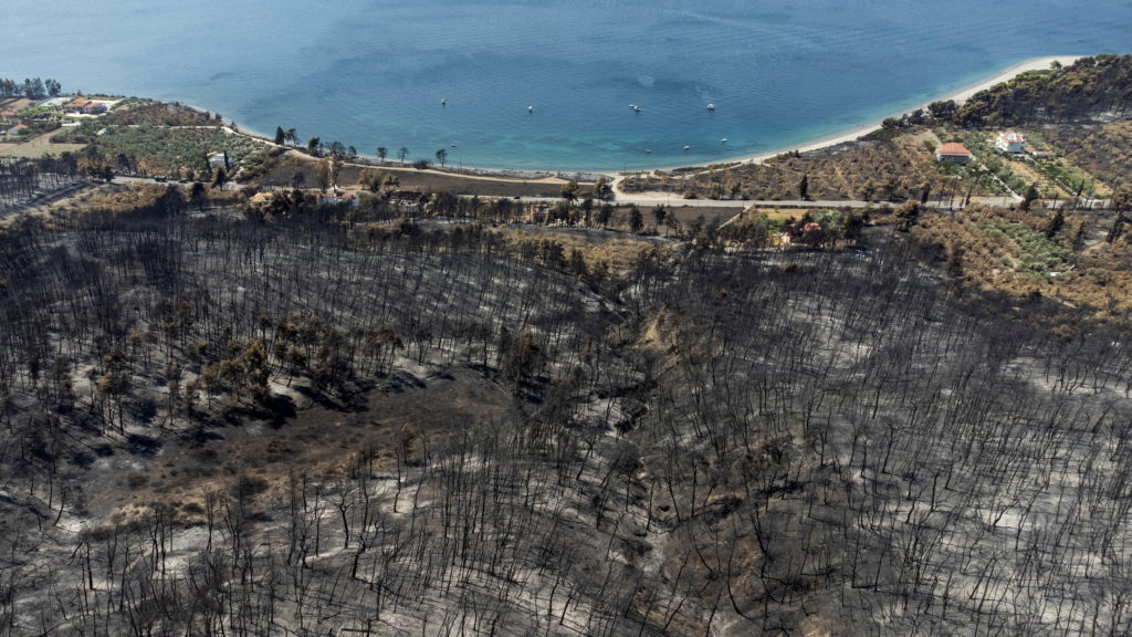 Wildfire on the island of Evia