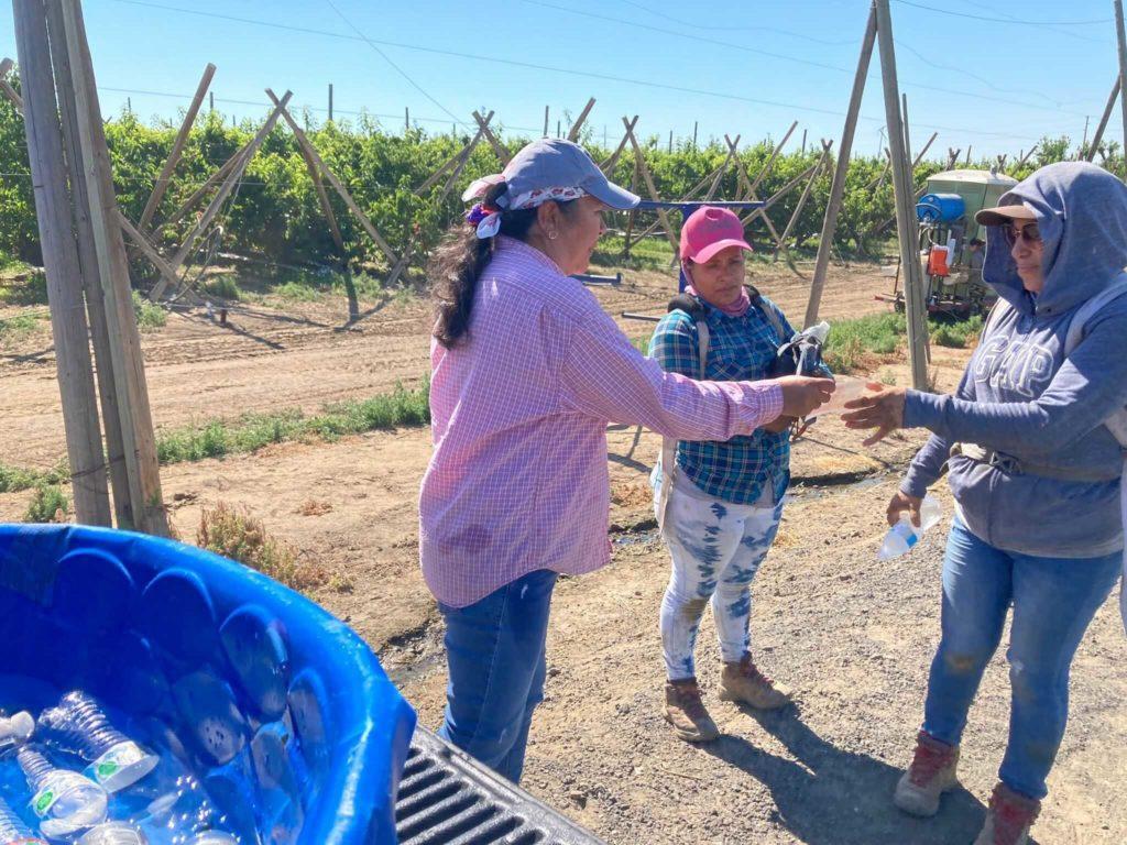 A women in a pink shirt talks to farmworkers in fields in Washington.